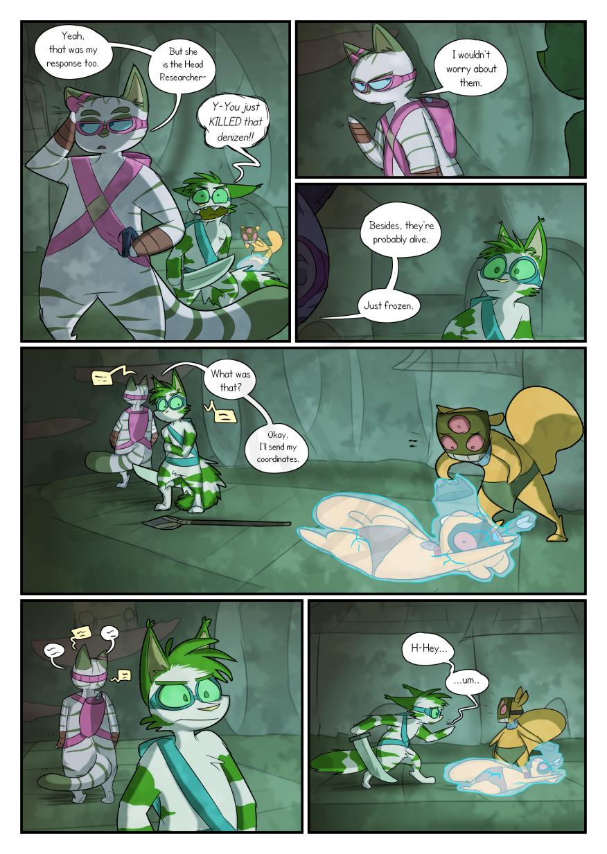 FD CH3 Page 17